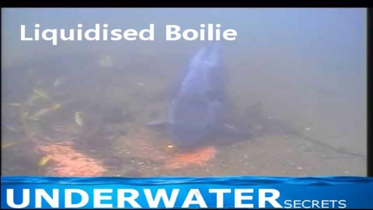 Liquidised boilie and stiff rig