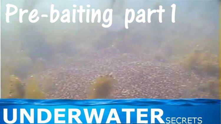 Pre-baiting    part1