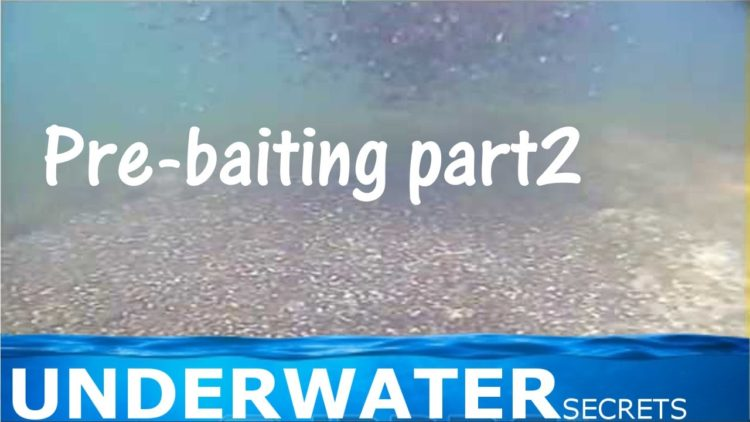 Pre-baiting part2