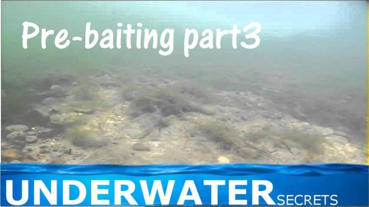 Pre-baiting part3