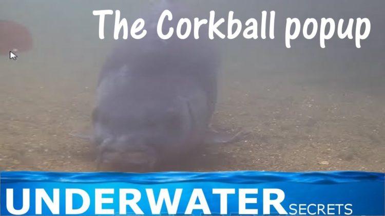 Corkball popup rig