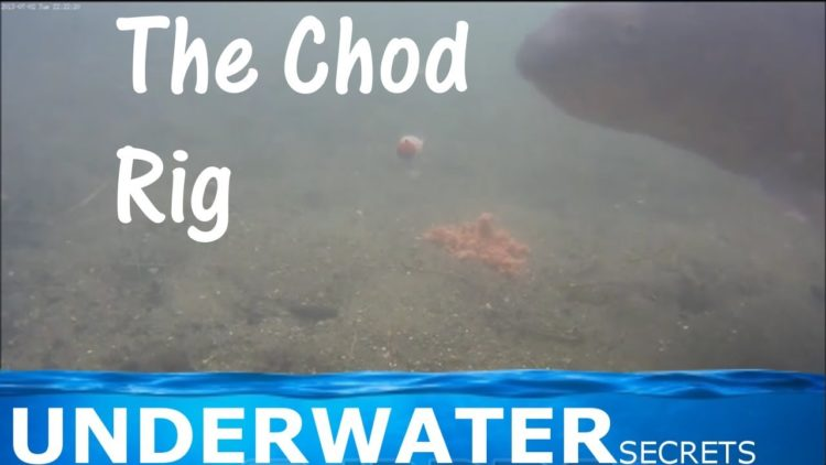 The Chod rig