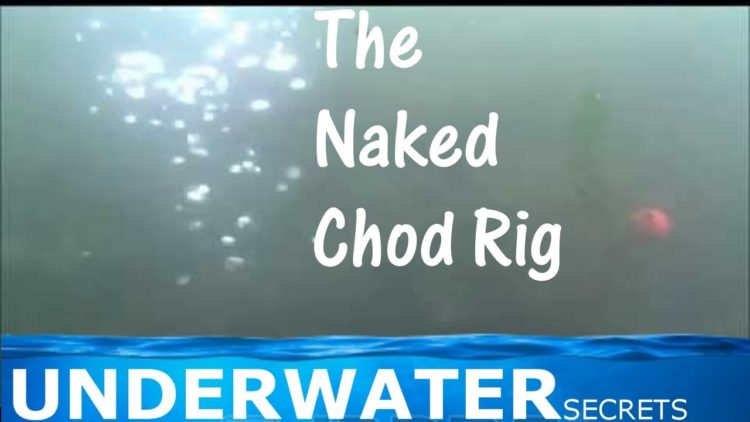 The Naked chod rig